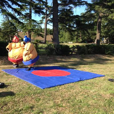 a photo of staff sumo wrestling at a staff party