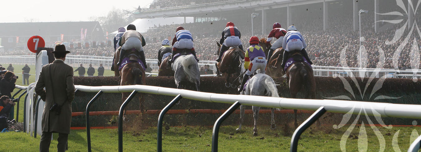 A photo of the Races in Cheltenham