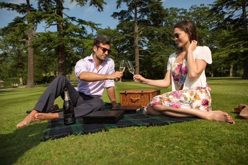 this is a photo of a couple enjoying their champagne picnic on the hotel grounds